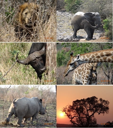 Hluhluwe Umfolozi 3 Day Safari Tour 25 – 27 August 2013