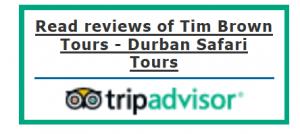 Tim Brown Tours - Durban Big 5 Safari Tours and Adventures